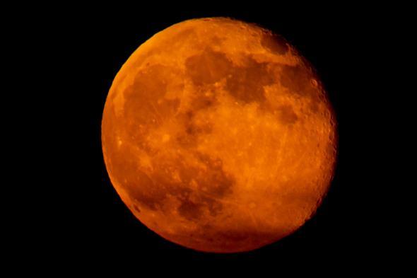 Супер луна се надвесва над хоризонта в нощното небе. Супер луната, която ще се издигне на 14 ноември ще бъде най-голямата видяна от 1948 година насам.
