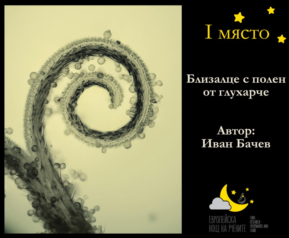 1-myasto-ivan-bachev-2