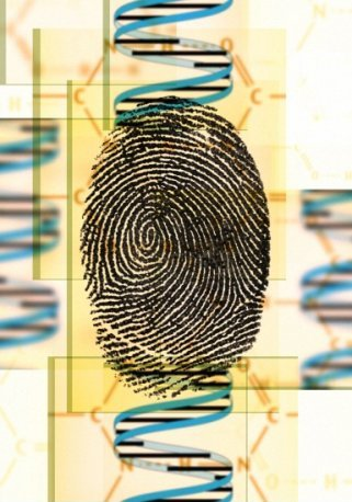 dna-fingerprint-b0003919