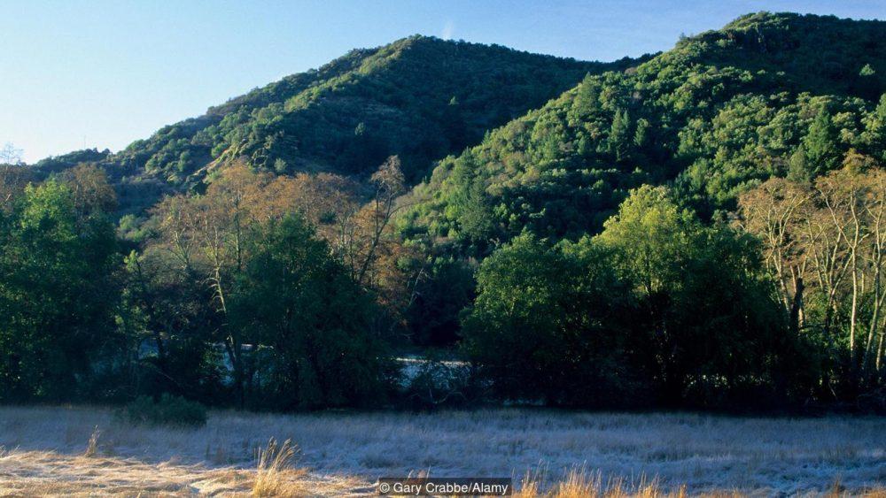 Sugarloaf Ridge State Park в Калифорния. Credit: Gary Crabbe/Alamy