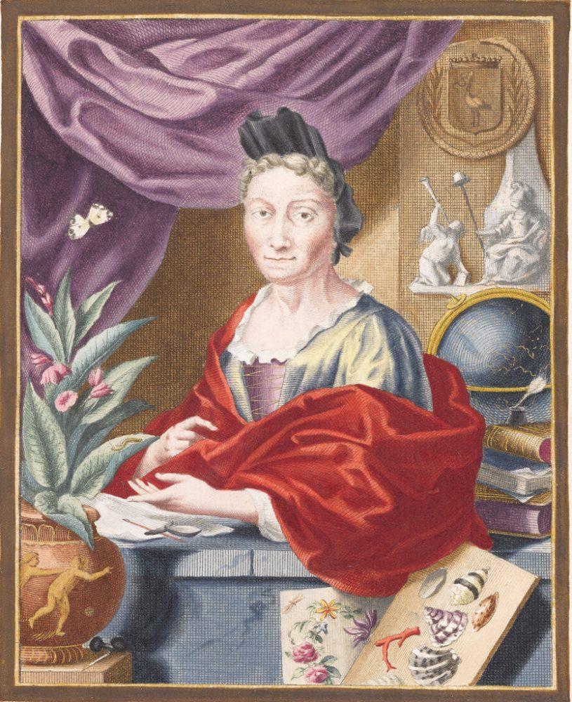 Мария Сибила Мериан – жена, родена в Германия и живяла в Холандия, е имала успешна кариера като художник, ботаник, натуралист и ентомолог. Credit: JACOB HOUBRAKEN, AFTER GEORG GSELL, VIA METAMORPHOSIS INSECTORUM SURINAMENSIUM, AMSTERDAM 1705, THE HAGUE, NATIONAL LIBRARY OF THE NETHERLANDS