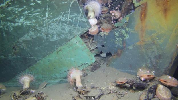 Останки на дъното на Мексиканския залив. Credit: BOEM