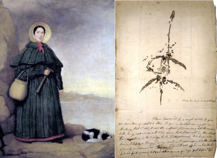 Мери Анинг и нейни записки за плезиозаврите.