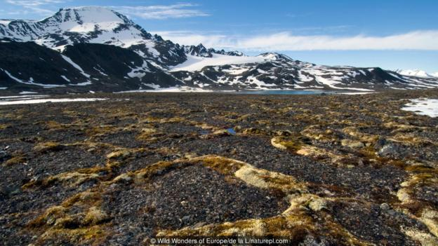 Вечна замръзналост в Шпицберген. Credit: Wild Wonders of Europe/de la L/naturepl.com
