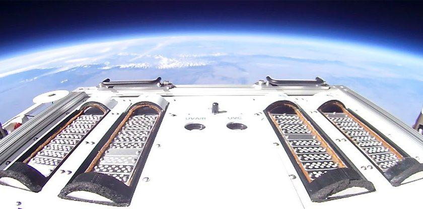Проби от бактерии в балонния експеримент E-MIST на НАСА. Credit: NASA