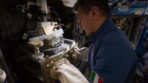 Астронавтът Paolo Nespoli от Европейската космическа агенция отглежда протеинови кристали на Международната космическа станция. Credit: NASA