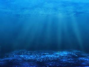 Океанските микробни общества се променят