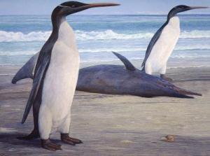 Огромни вкаменелости на пингвини в Нова Зеландия