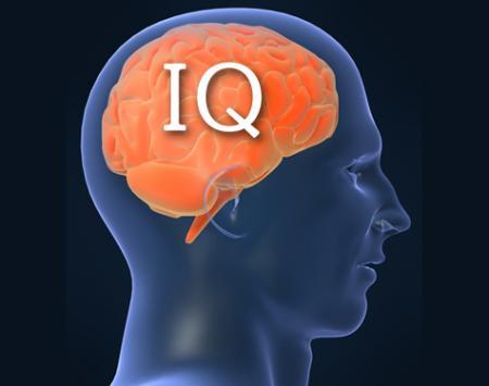 Човешкият интелект се измерва в мозъка