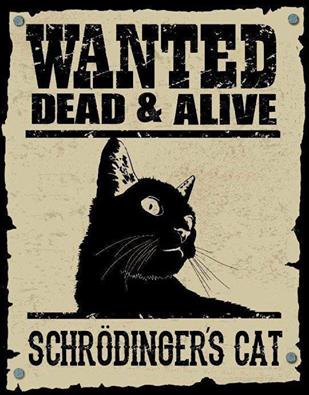 Търси се: жива И мъртва - котката на Шрьодингер!