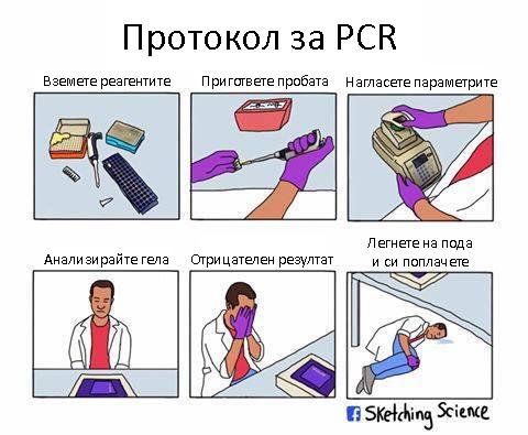 Комикс: Протокол за PCR