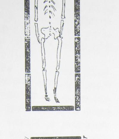 Погребални практики и гробни съоръжения в римската провинция Тракия