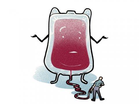 Вредно ли е даряването на кръв за имунната система? Краткият отговор е: Не.