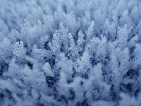 Бактерии използват специален трик, за да правят лед