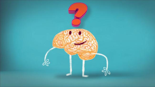Какво представлява кръвно-мозъчната бариера?