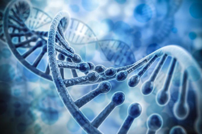 Културните различия могат да оставят своите следи върху ДНК