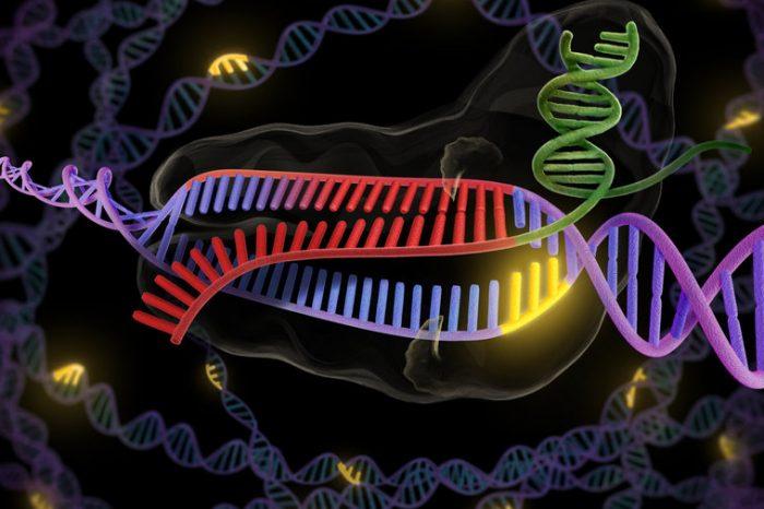 Видео на Румен Александров: CRISPR - как това ще промени света?