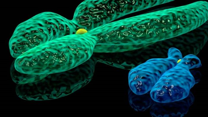 Най-новите постижения и уникална апаратура представя Институтът по молекулярна биология - БАН