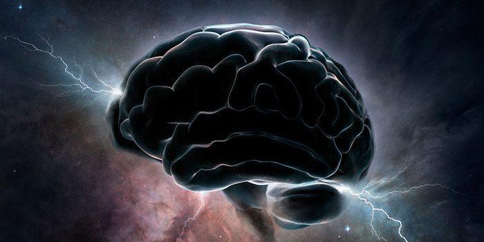 Видео: Човешкият Мозък