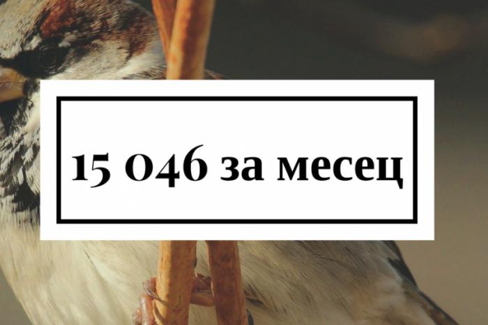 15 046 изтегления на брой 95 за 1 месец!