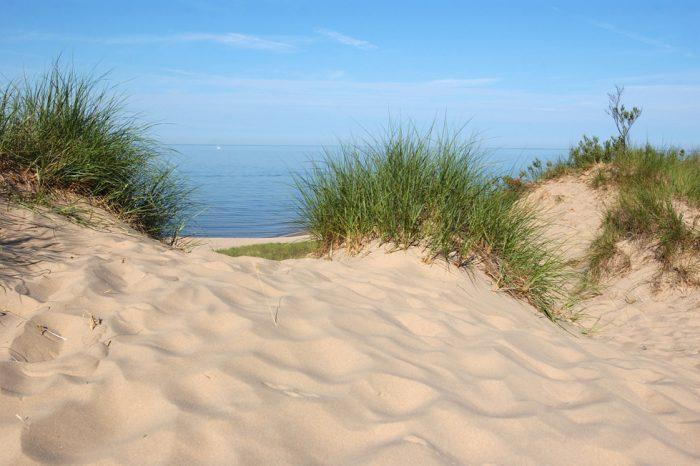 """Пътуваща фотоизложба """"Пясъчните дюни и скалните местообитания – част от красивата природа на България"""""""