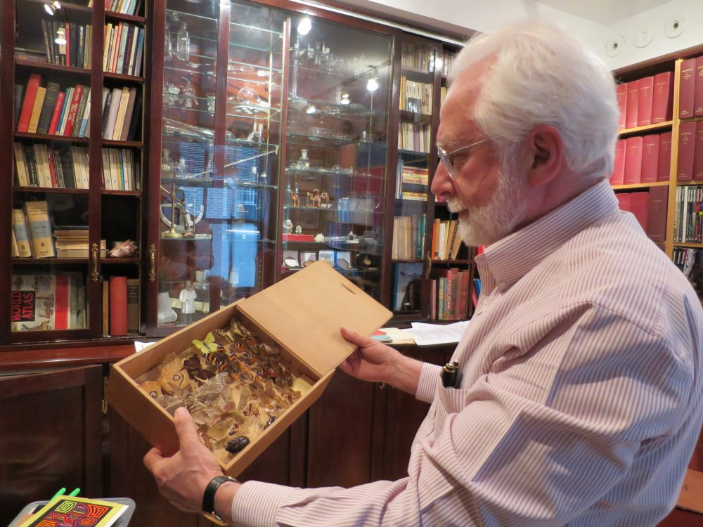 Проф. Рeфетов с колекция от пеперуди събирани от изследователската му дейност из джунглите на Амазонка