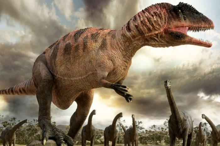 Видео: Всичко, което знаете за динозаврите е грешно