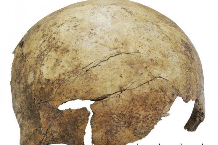 Масов гроб, открит в Германия, подсказва за касапница на 7 000 години