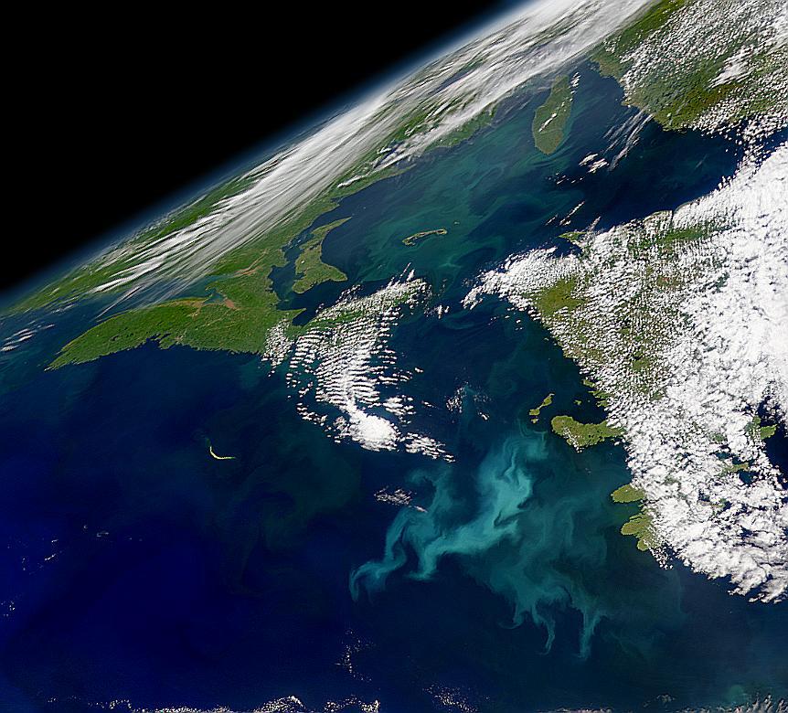 фиг. 4. Красива сателитна снимка, която показва цъфтеж при Нюфаундленд в Западния Атлантик на 21 юли 1999 г. Човечеството инвестира милиарди долари за изпращането на сателити в Космоса; снимката е част от наградата. Осигурена е от SeaWiFS Project, NASA/Goddard Space Flight Center и ORBIMAGE. Източник: Tobby Tyrrell, http://www.noc.soton.ac.uk/soes/staff/tt/eh/watl.html.