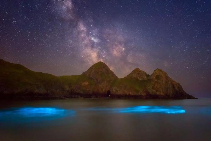 Сини светлинки в морето озаряват бреговете на Уелс. На какво се дължат?