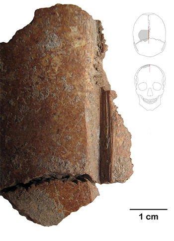 Един от издялканите черепи. Credit: German Archaeological Institute