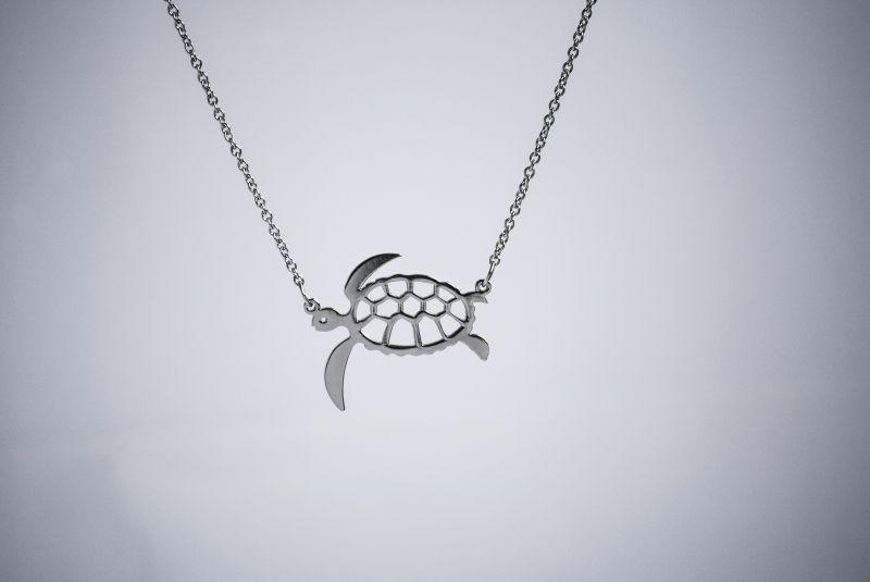 Тази костенурка ви казва, че трябва да я притежавате, за да подкрепите Българска Наука. За целта щракнете върху снимката. :)