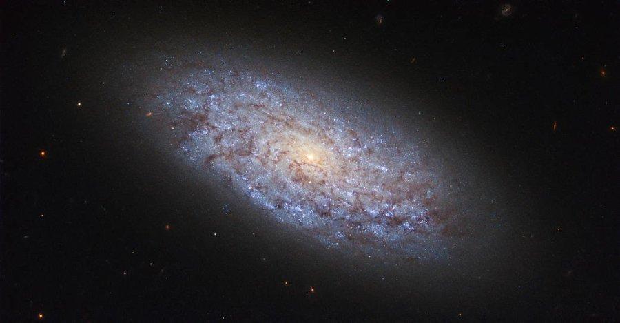 Тази галактика-джудже е наречена NGC 5949. Тя се намира на разстояние от около 44 милиона светлинни години от Земята, което я поставя в космическото обкръжение на Млечния път. Credit: ESA/Hubble & NASA