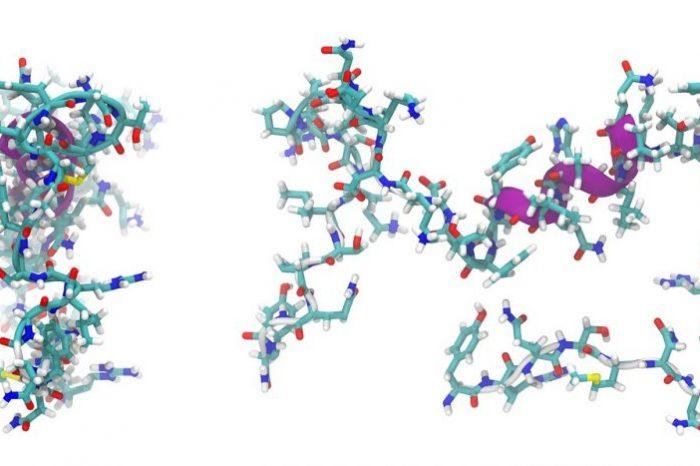 Нов лиганд удължава полуживота на пептидни лекарства от минути до дни