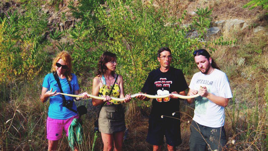 Екипът открил змията по време на рутинен мониторинг.