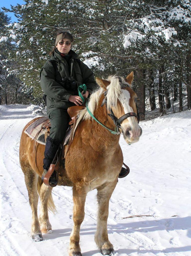 На полева работа в Осогово с кон