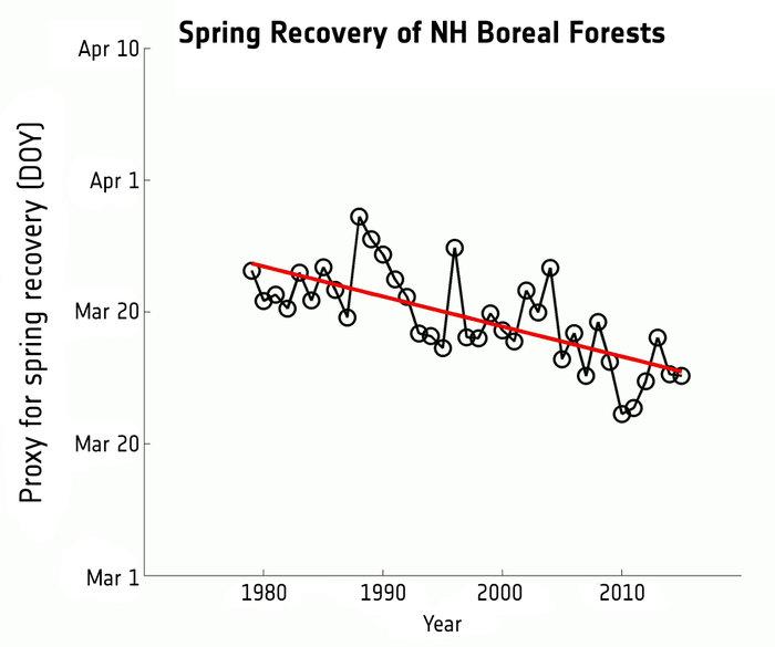 Графиката показва началото на фотосинтетичната активност в тайгата през пролетта от 1979 до 2015. За период от 36 години, началото на тази активност – иначе казано началото на растежа – се е изместило с 8 дни по-рано.Credit:GlobSnow/Finnish Meteorological Institute