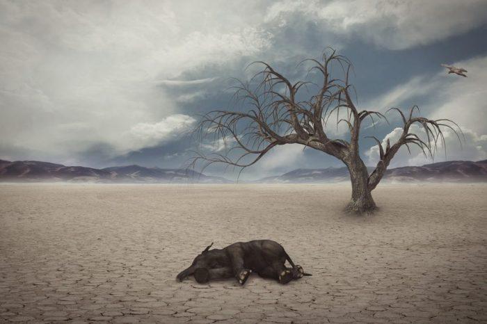 Заплашени ли сме от шесто масово измиране?