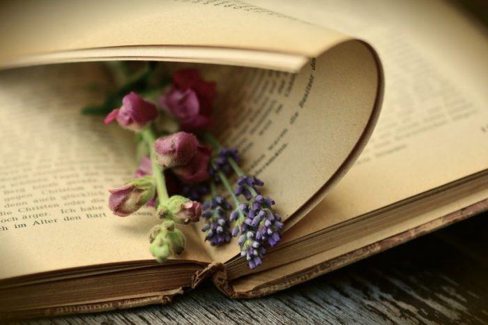 На какво миришат старите книги? Съхраняването на ароматите като културно наследство