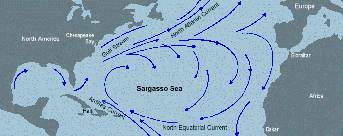 фиг.1. Местоположението на Саргасово море с обграждащите го течения. Източник: The Robinson Library, http://www.robinsonlibrary.com/geography/oceanography/ecology/sargasso.htm