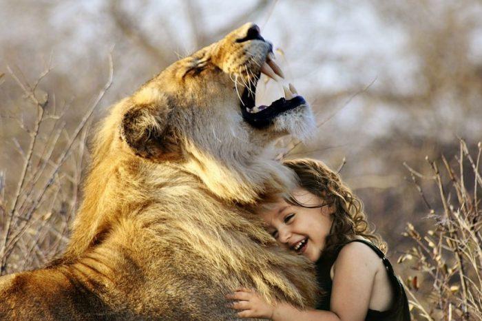 Дори животните, които обичаме, рядко задържат вниманието ни за дълго