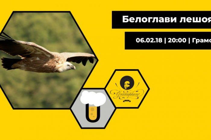 Как опазваме и научаваме повече за един изчезващ вид в България – белоглавите лешояди