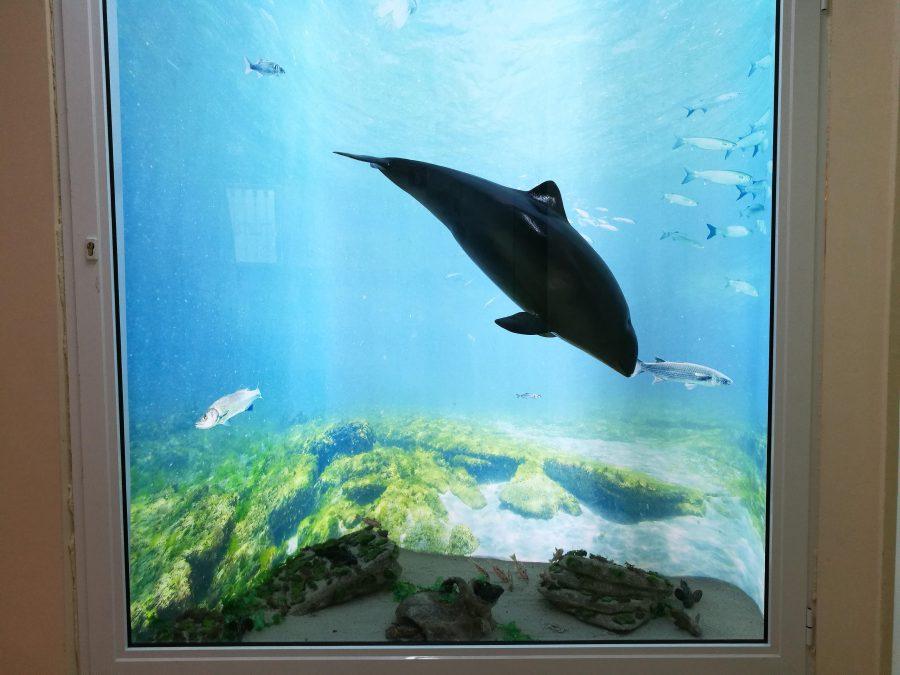 Морската диорама. Снимка: Илко Качаров