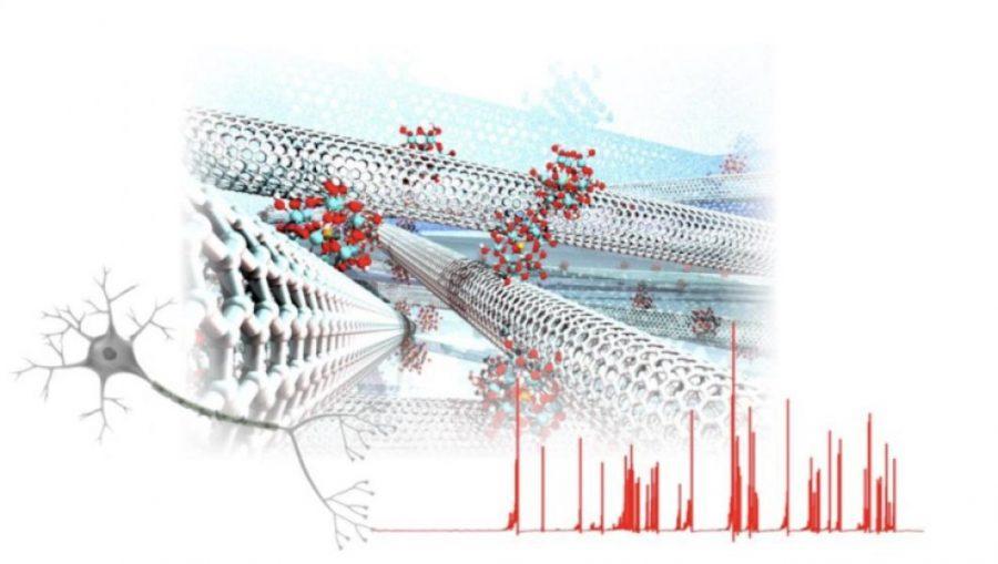 Спонтанни химични сигнали, имитиращи нервните импулси, се създават в мрежа от въглеродни нанотръбички, покрити с молекули на полиоксометалат. Credit: Osaka University