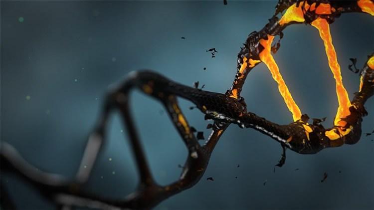 Артистична интерпретация на ДНК молекула. Лиценз: СС0 публичен домейн