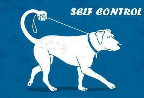 Липсата на самоконтрол в юношеството не е само човешки проблем