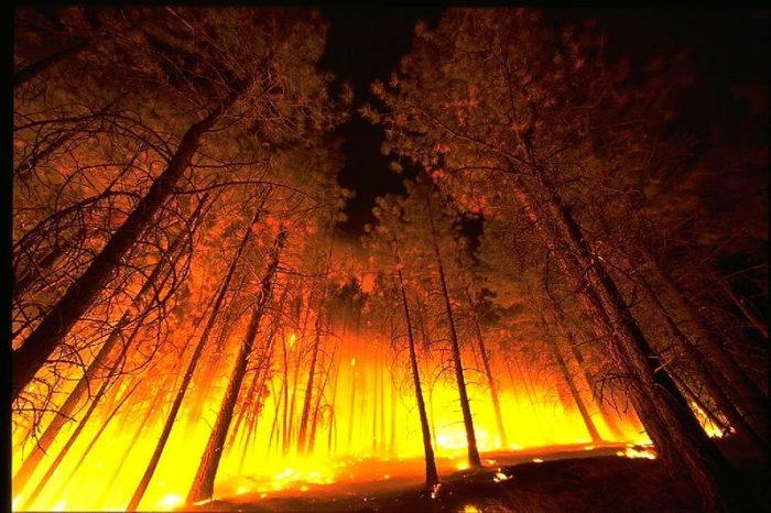 Как огънят оформи човека и тласна към създаването на модерния свят