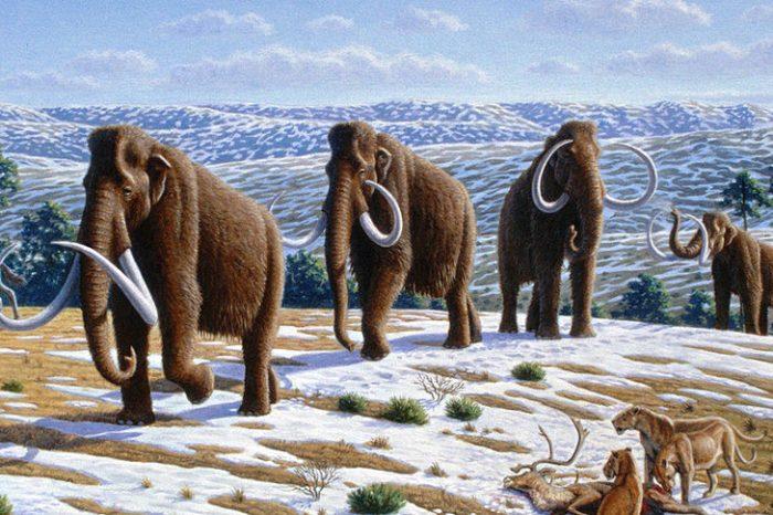Извънпланетарно въздействие може да е предизвикало изчезването на животните през ледниковата епоха