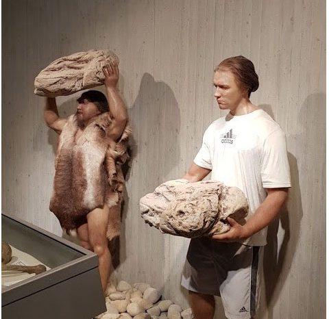 Какво можете да видите в Неандерталския музей в Германия - статия от 126 брой