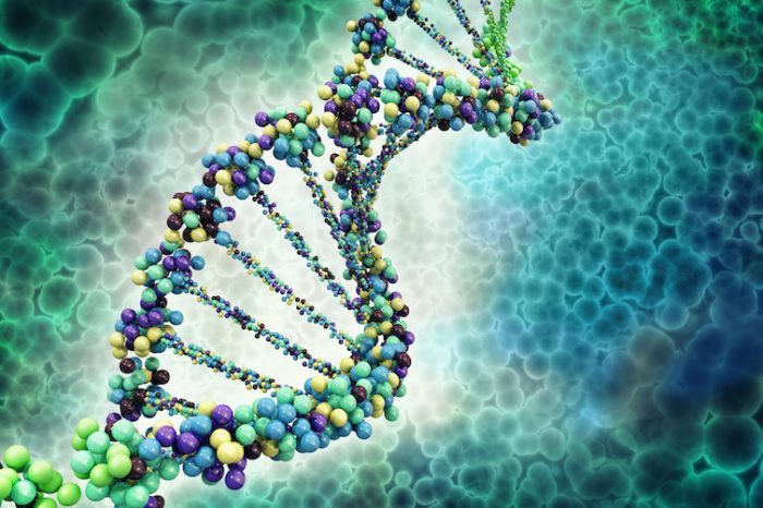 Най-старата проба от човешко ДНК изяснява спора за нашите предци
